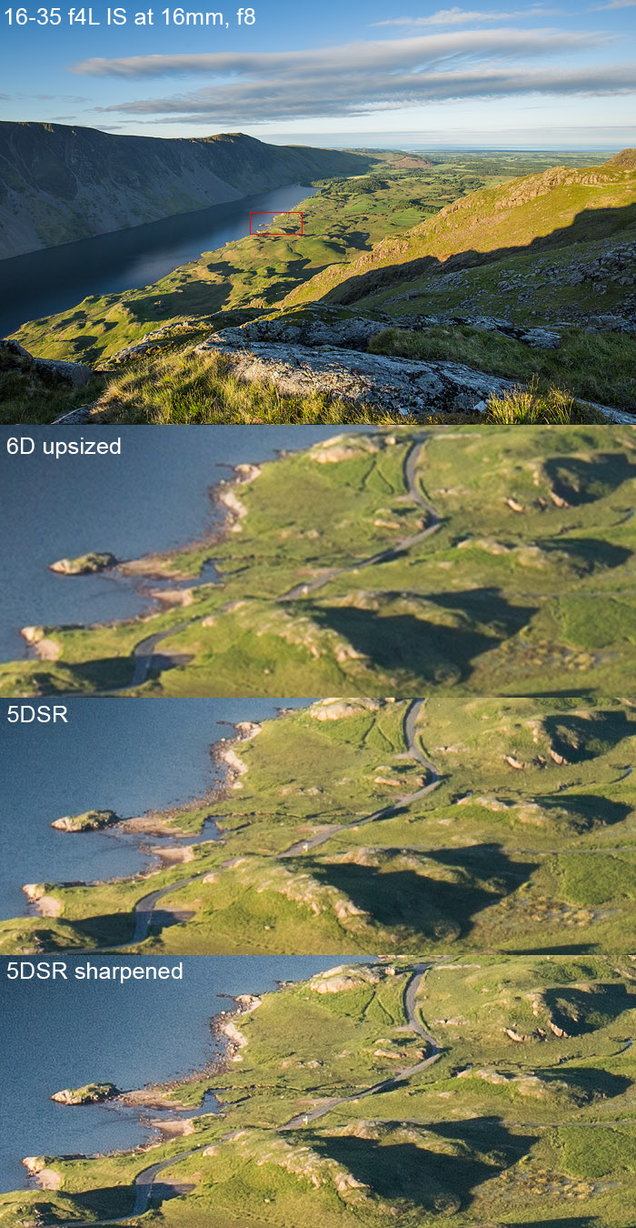 The resolving power of the 5DSR is incredible. With sharpening the results are even more impressive.
