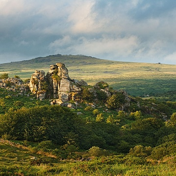 Vixen Tor surrounded by trees with a view to Great Mis Tor behind