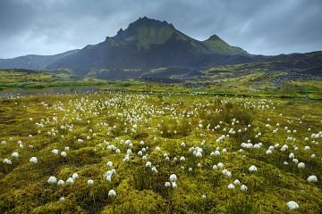 Photo taken at Highlands of Iceland