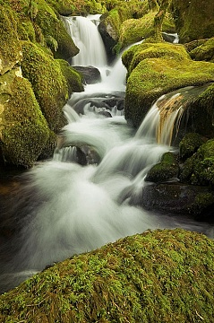 Waterfall and mossy rocks
