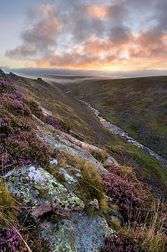 sunrise over tavy cleave viewed from Sharp Tor with heather in the foreground