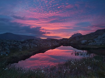 red sunrise of altocumulus reflected in a pool in snowdonia